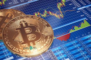 PayBito's Portfolio Management System for Crypto Helps Evaluate Trader's Portfolios
